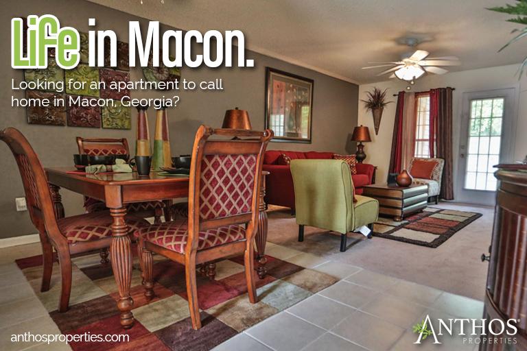 Rent In Macon Ga Anthos Properties